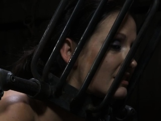 Tormented villein is giving master a lusty fellatio